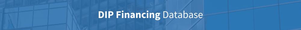 Dip financing database